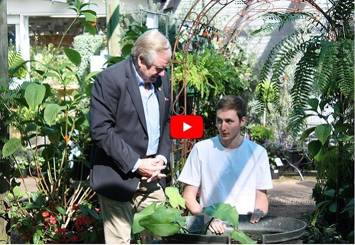Our Horticulture Scholarships
