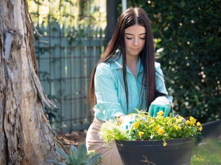 Sustainability through Horticulture: Katanah Jas